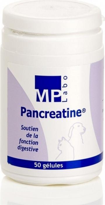 MP Labo Pancreatine Unterstützung der Verdauungsfunktion