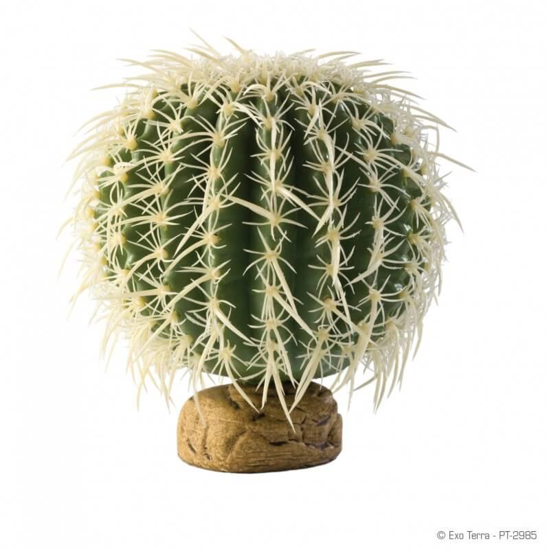Cactus oursin Exo Terra_0