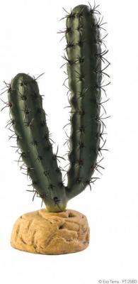 Cactus doigts Exo Terra