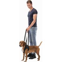 Aide à la marche pour chien - Plusieurs tailles disponibles