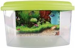Aqua Travel Box
