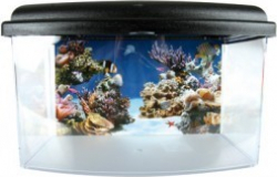 Aqua travel box II medium 28cm_5
