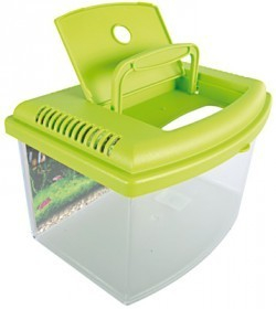 Déchirure ? Pourriture ?  La_aqua-travel-box-ii-medium-28-cm-8337