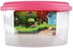 Aqua travel box II medium 28cm_2