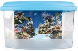 Aqua travel box II medium 28cm_3