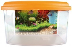 Aqua travel box II medium 28cm_4