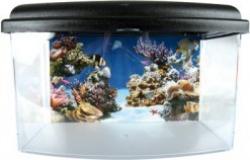 Petit aquarium Aqua travel box II medium 28cm
