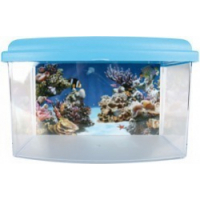 Aqua Travel Box