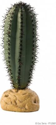 Cactus saguaro Exo Terra