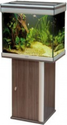 Aquarium ambiance 28 images aquarium ambiance for Meuble 60x40