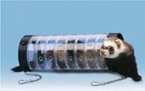 Tunnel pour furet transparent