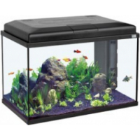 Aquarium Aqua Start 55 noir LED