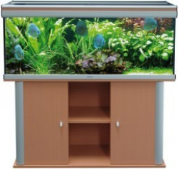 Meuble Pour Aquarium Ambiance 100x40 H Tre Aquarium Et