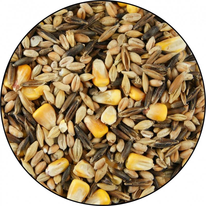 Farmers' Mix IAKO Alleinfuttermittel für Geflügel - Ideal für Geflügel und Legehennen
