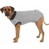 Beschermingsbody voor honden