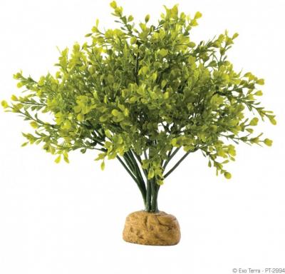 Buisson de buis Exo-Terra pour terrarium