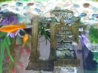 5337_Composition-pacific-dream_de_Jerome_10553261975d383052523203.83411777