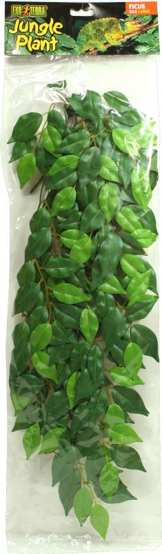 Plante ficus Exo Terra pour terrarium