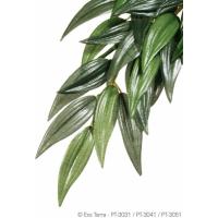 Plante ruscus Exo Terra (1)