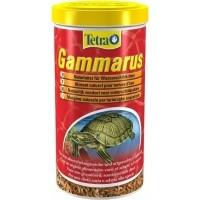 Nourriture tortue aquatique