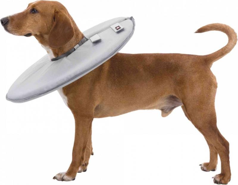 Collier de protection pour chiens et chats