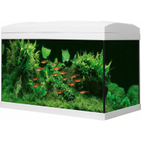 Aquarium Marina Basic LED 54L Blanc ou Noir