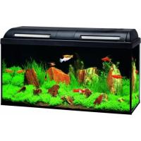 Aquarium Marina Basic LED 96L Noir