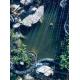 56347_Oase-AquaActiv-AlGo-Greenaway-Anti-eau-verte-pour-bassin_de_Janine_189324661660812759036584.20674184