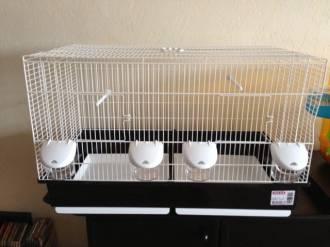 Cage-d'élevage-Cova-67-+-tiroirs_de_Martine_135327658851b1b89da89574.78114119