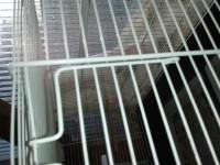 Cage-d'elevage-Cova-67-+-tiroirs_de_nathalie_157747535452c14e709baa44.42778900