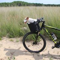 Panier vélo pour chien en tissu Zolia Biky-001