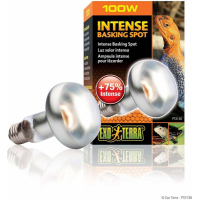 Lampe chauffante Intense Basking Spot Exo-terra