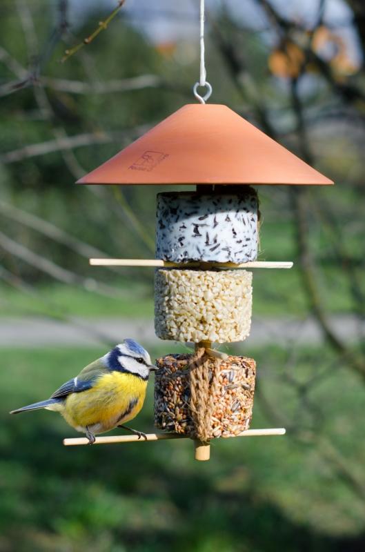 Gasco Mangeoire pour oiseaux de la nature - La tour d'hiver