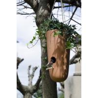 O jardim secreto - Crescimento criativo - Ninho de pássaros 2 em 1