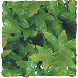 Plante congo cannabis artificielle 46cm_0