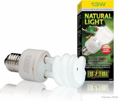 Ampoule fluorescente Repti Glo 2.0 à lumière du jour