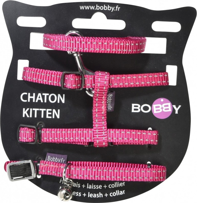Pack Chaton Safe BOBBY - Réfléchissant - 4 couleurs au choix