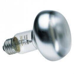 ampoule chauffante pour terrarium ampoule terrarium. Black Bedroom Furniture Sets. Home Design Ideas