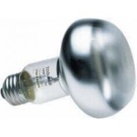 Ampoule chauffante pour terrarium