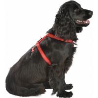 Harnais pour chien Classique Safe BOBBY - Réfléchissant - Noir ou Rouge