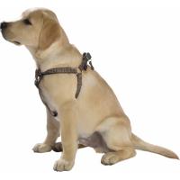 Arnés reflectante para perros Safe BOBBY - Varios colores