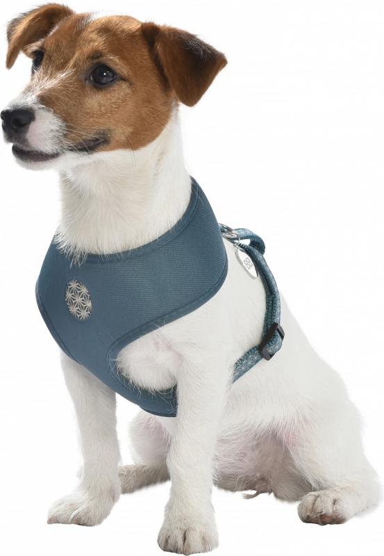 Arnés Camiseta Asanoha BOBBY para perros pequeños - Varios colores disponibles