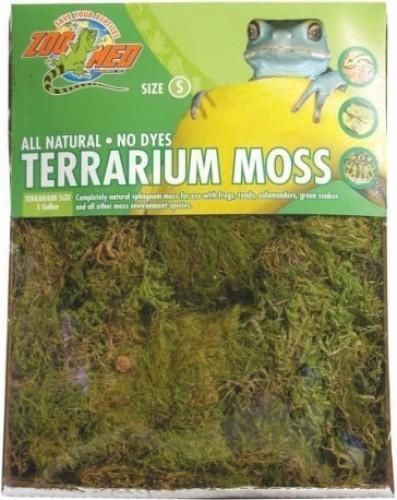 Mousse Terrarium Moss LARGE