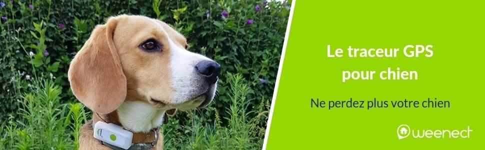 Ne perdez plus votre chien avec le traceur GPS Weenect !