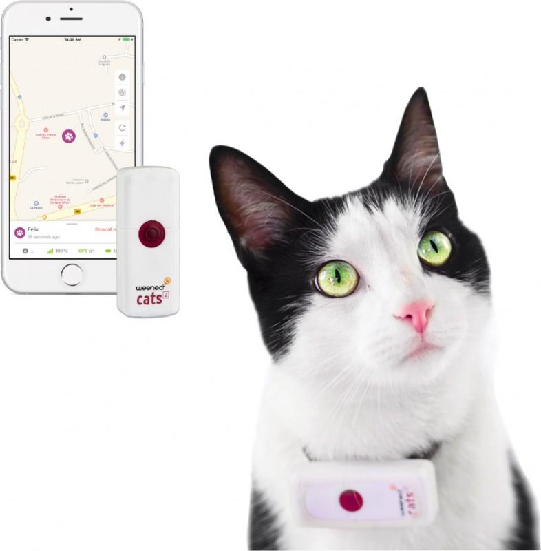 GPS-Peilsender für Katzen Weenect Cat²