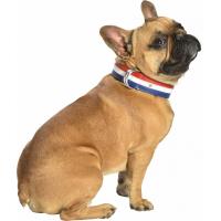 Collier pour chien en cuir Henri Fabriqué en France
