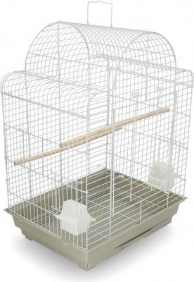Canari/Petits oiseaux