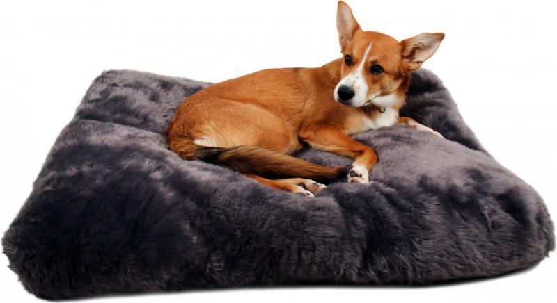 Matelas pour chien cosy Zolia Sully