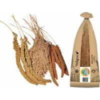 Millet tricolore Vadigran Produit en France en grappe