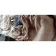 62268_Coussin-apaisant-gris-anthracite-pour-chien-et-chat-Zolia-Bob--_de_Emmanuelle_138530178460992263d17ce8.87676805